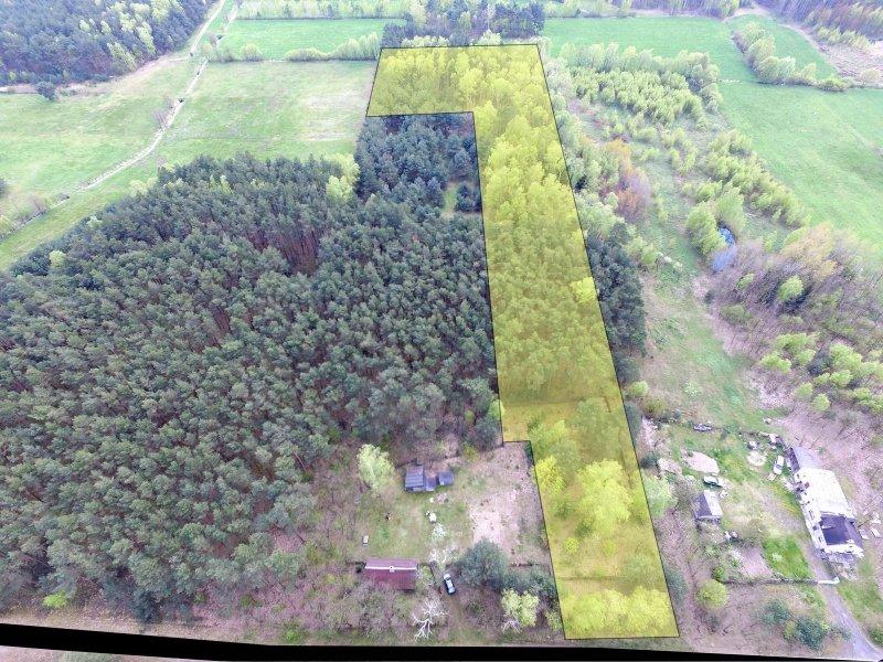 Na sprzedaż: działka wraz z lasem w Słuszkowie