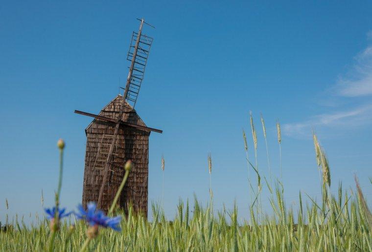 Stary wiatrak w Sikowie w powiecie wolsztyńskim, fot. Patrycja Ageena